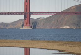 Crissy Field in December