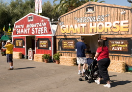 Giant attractions