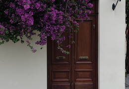 doorway & flowers