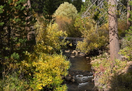 Truckee in the Fall